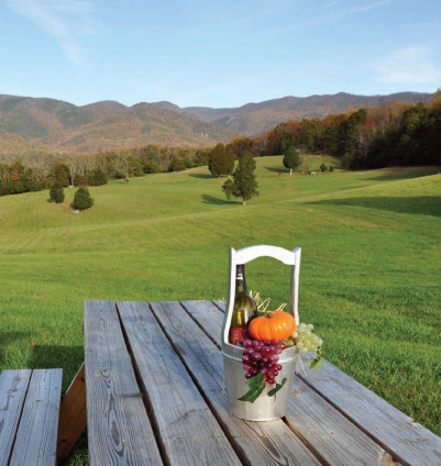 Swirling and Sipping along the Blue Ridge