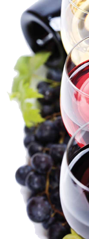WINE 101: Start a Club • Originally published in Lake & Sumter Style, April 2011